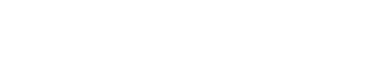 Noll & Partners
